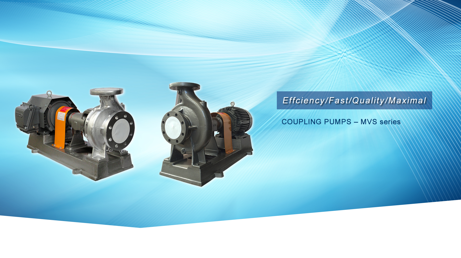COUPLING PUMPS – MVS series