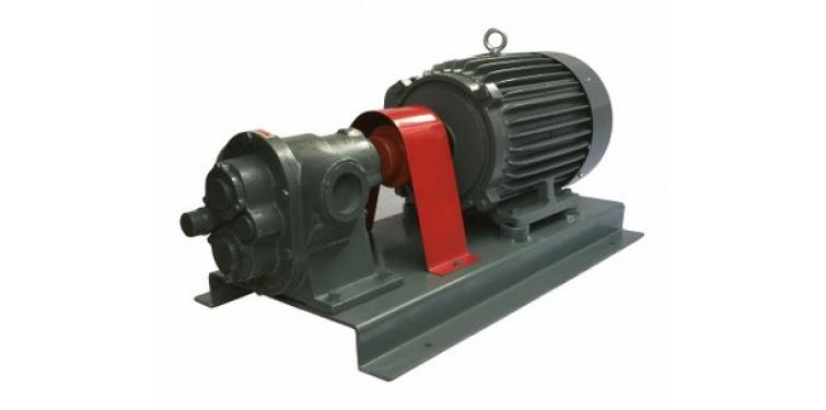 直結式齒輪泵HG